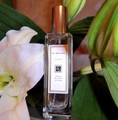 Женский аромат Orange Blossom от Jo Malone