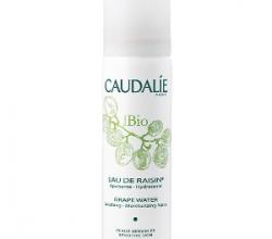 Виноградная вода-спрей Eau de raisin Bio от Caudalie (1)