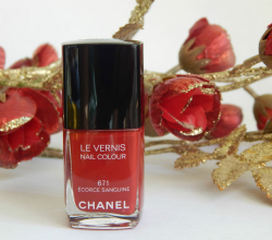Лак для ногтей Le Vernis Nail Colour (оттенок № 671 Ecorce Sanguine) от Chanel